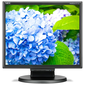 """NEC 17"""" E172M-BK LCD Bk / Bk  ( TN; 5:4; 250cd / m2; 1000:1; 5ms; 1280x1024; 170 / 170; D-Sub; DVI-D; HAS 50 mm; Tilt; Spk 2*1W)"""