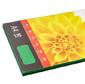 Бумага ColorCode Color 619976 A4/80г/м2/100л./изумруд интенсив