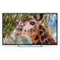 "Телевизор LED PolarLine 55"" 55PU11TC-SM черный / Ultra HD / 50Hz / DVB-T2 / DVB-C / DVB-S2 / USB / WiFi / Smart TV  (RUS)"
