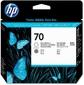 HP 70 Gloss Enhancer and Grey Printhead