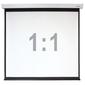"""Digis Electra-F [DSEF-1107] Экран настенный с электроприводом  формат формат 1:1,  118"""",  219x222,  рабочая поверхность 213x213,  MW"""