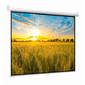 Экран настенный Digis Optimal-B DSOB-4303  MW 4:3  (200x150)