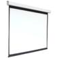 Экран 150x200см Digis Electra-F DSEF-4303 4:3 настенно-потолочный рулонный  (моторизованный привод)