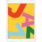 Apple 10.2-inch iPad  (2019) Wi-Fi + Cellular 32GB - Silver