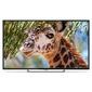 "Телевизор LED PolarLine 50"" 50PU11TC-SM черный / Ultra HD / 50Hz / DVB-T2 / DVB-C / DVB-S2 / USB / WiFi / Smart TV  (RUS)"