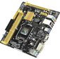 ASUS H81M-P / C / SI RTL {1150,   iH81,  DDR3,  PCI-E,  SATA 6Gb / s,  ALC887 8ch,  GBL,  USB3.0,  D-SUB,  DVI-D,  mATX}